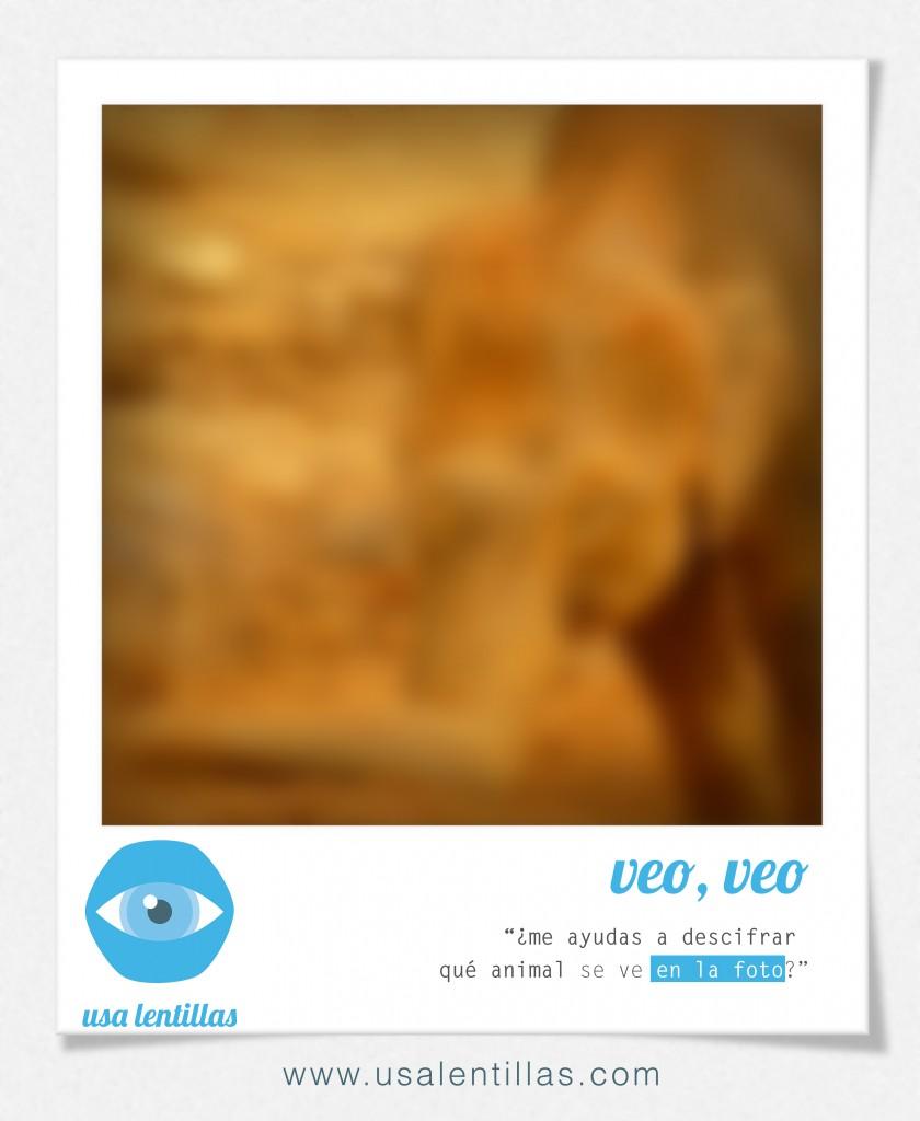 POLAROID_02_astigmatismo_defecto