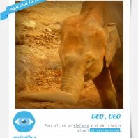 POLAROID_02_astigmatismo_solucion